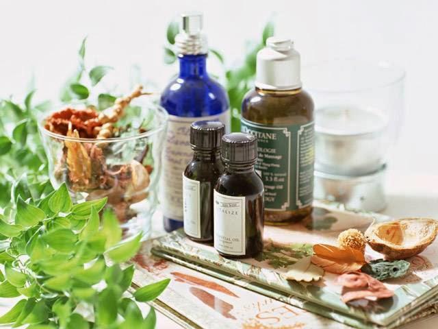 Приготовление и применение лекарственных препаратов из растений в домашних условиях