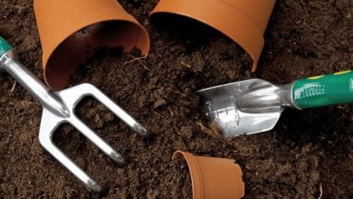 Эффективность воды с яичной скорлупой для удобрения