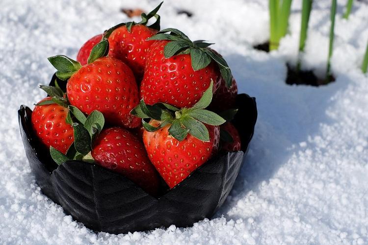 Подготовление клубники к зиме