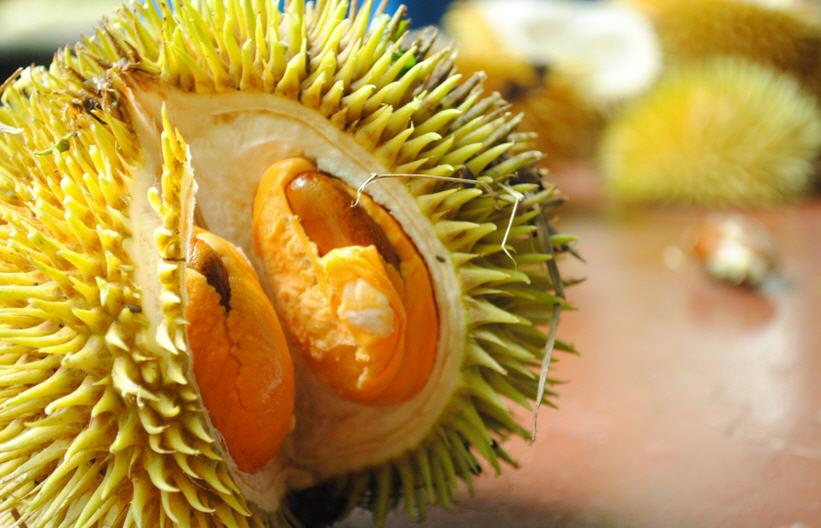 Дуриан (фрукт): как едят, полезные свойства и противопоказания