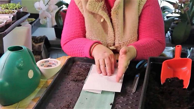 Раскладываем бумажный слой поверх подложки