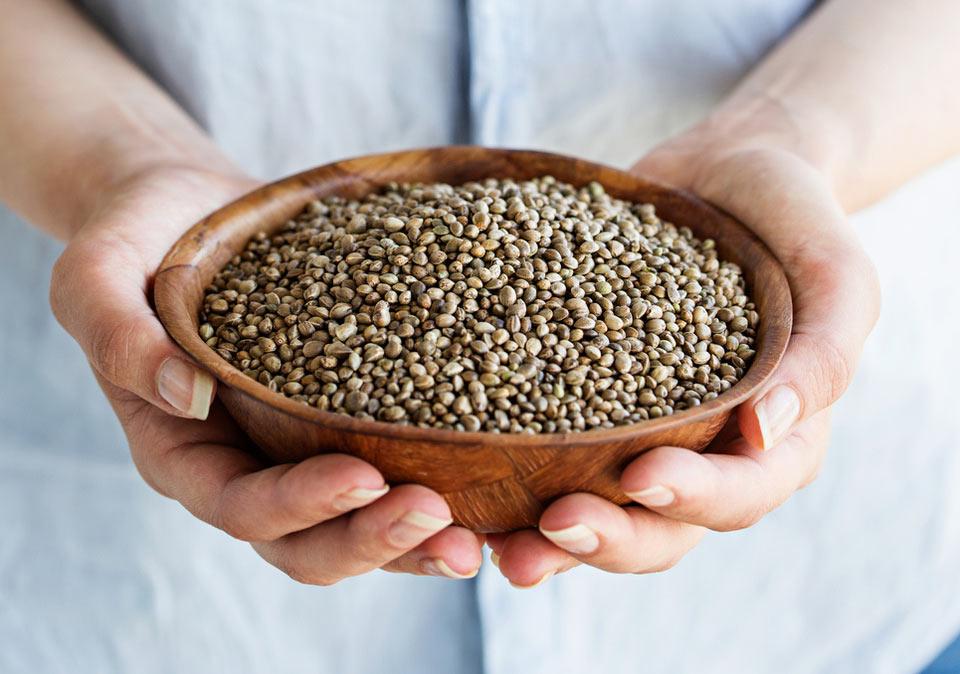 Семена конопли содержат множество витаминов и минералов