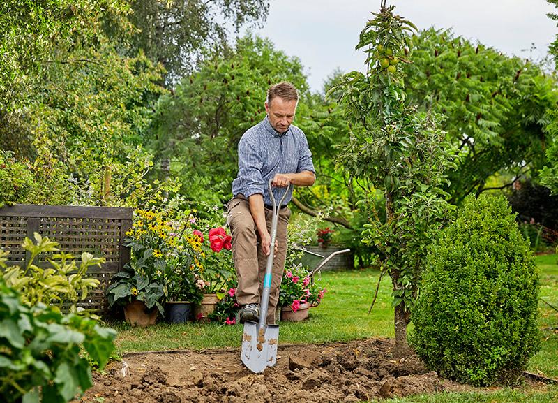 Не прикопаешься: 5 советов по выбору лопаты